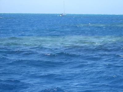 11-la-barriere-de-corail