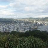 2. Vue sur Wellington de jour